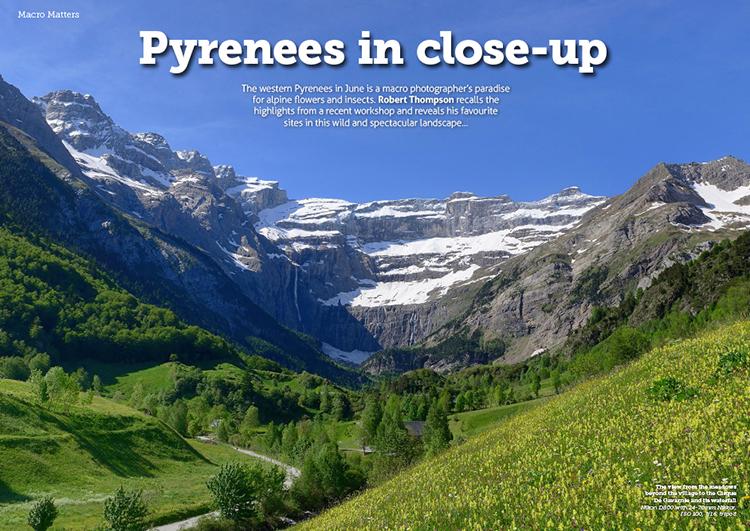 MacroMatters20-Pyrenees